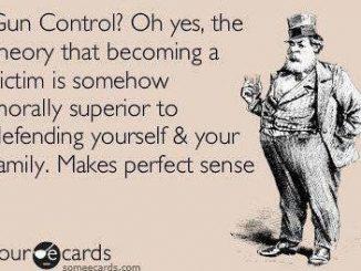gun control. live free armory, militia